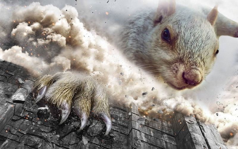 The Top Best Blogs On Photoshop Battles - Squirrel photographed in heroic pose becomes star of hilarious photoshop battle